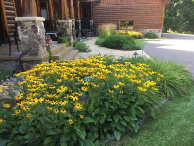 Brained Garden & Landscaping Maintenance